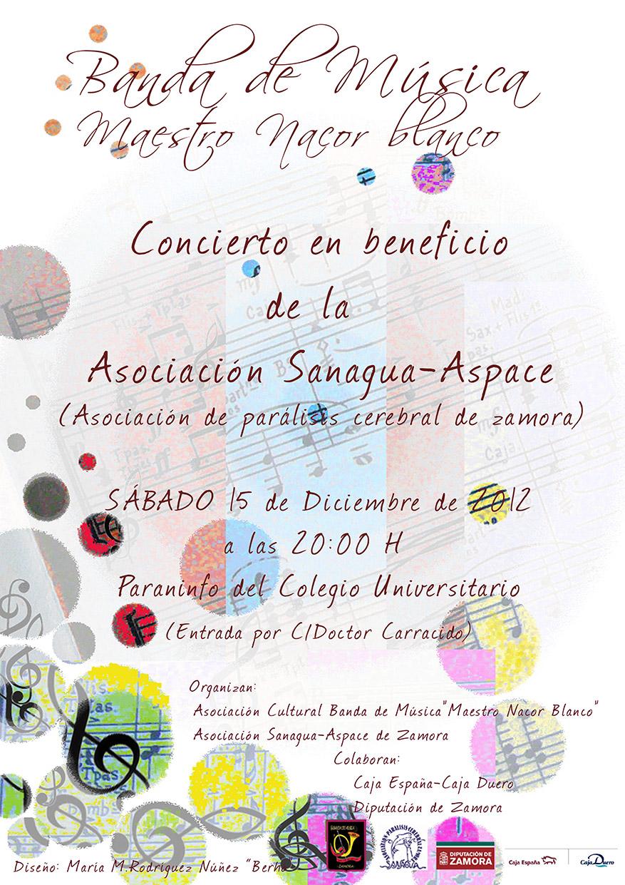 Concierto benéfico en Zamora